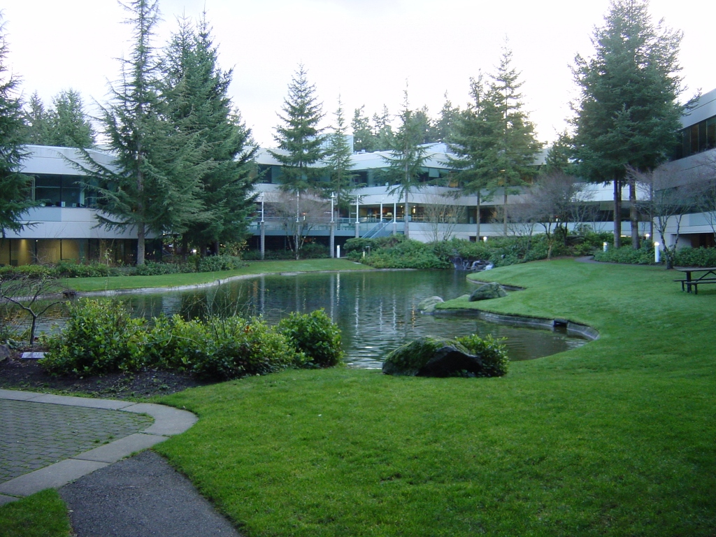 My corporate masters top ten favorite spots on the microsoft campus